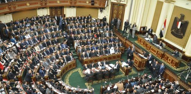 Egypt's House rejects Irish parliament's demand to release Halawa