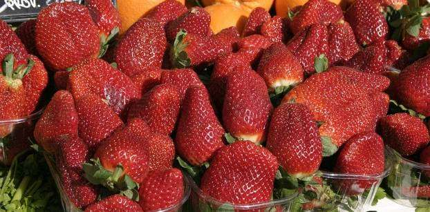 Did Egyptian strawberries cause hepatitis A in U.S. state of Virginia?