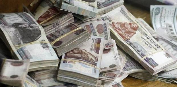 Egyptian banks have attracted $3 bln since currency float - CBE official