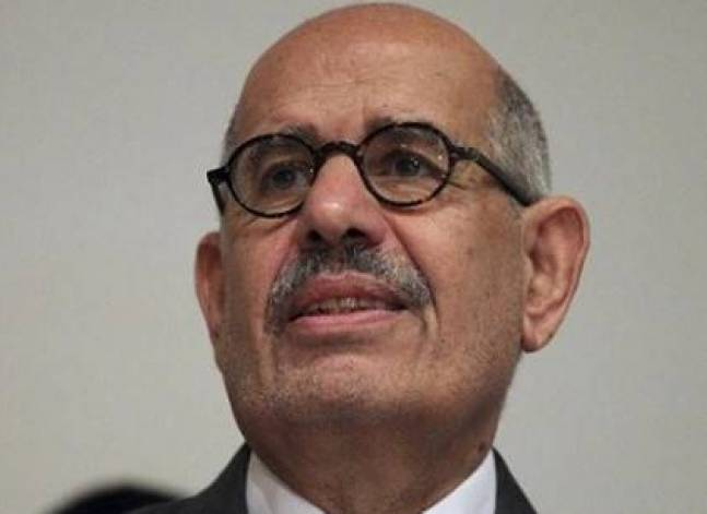 Egypt's ElBaradei breaks silence on Rabaa dispersal in rare detailed statement