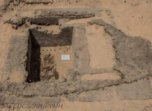 Egypt unearths city and cemetery over 7,000 years old