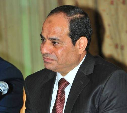 Egypt's Sisi says may amend peace treaty with Israel when president