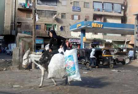 Libya, Egypt make democratic gains in 2012 - U.S.-based watchdog