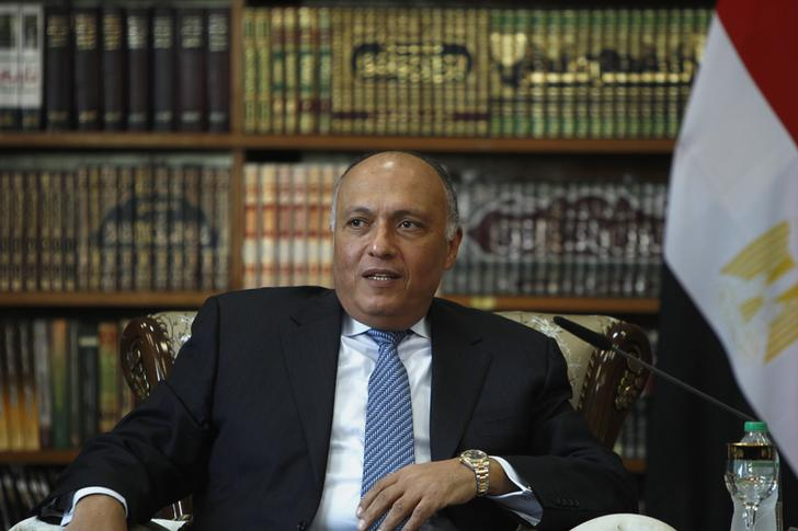 Egypt's Foreign Ministry slams reaction against recent life sentences