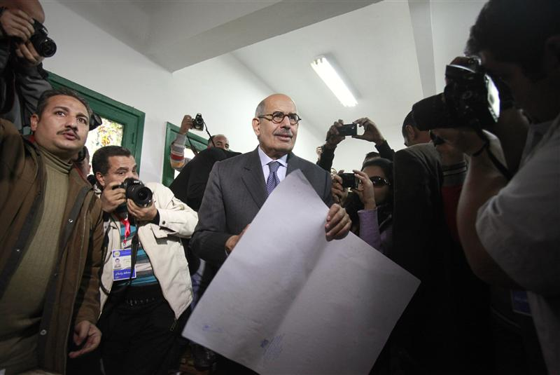 ElBaradei: We insist on achieving revolution's goals regardless of sacrifices