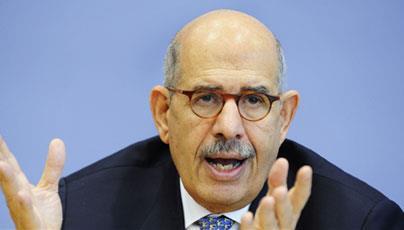 ElBaradei urges Egyptians to vote against constitution