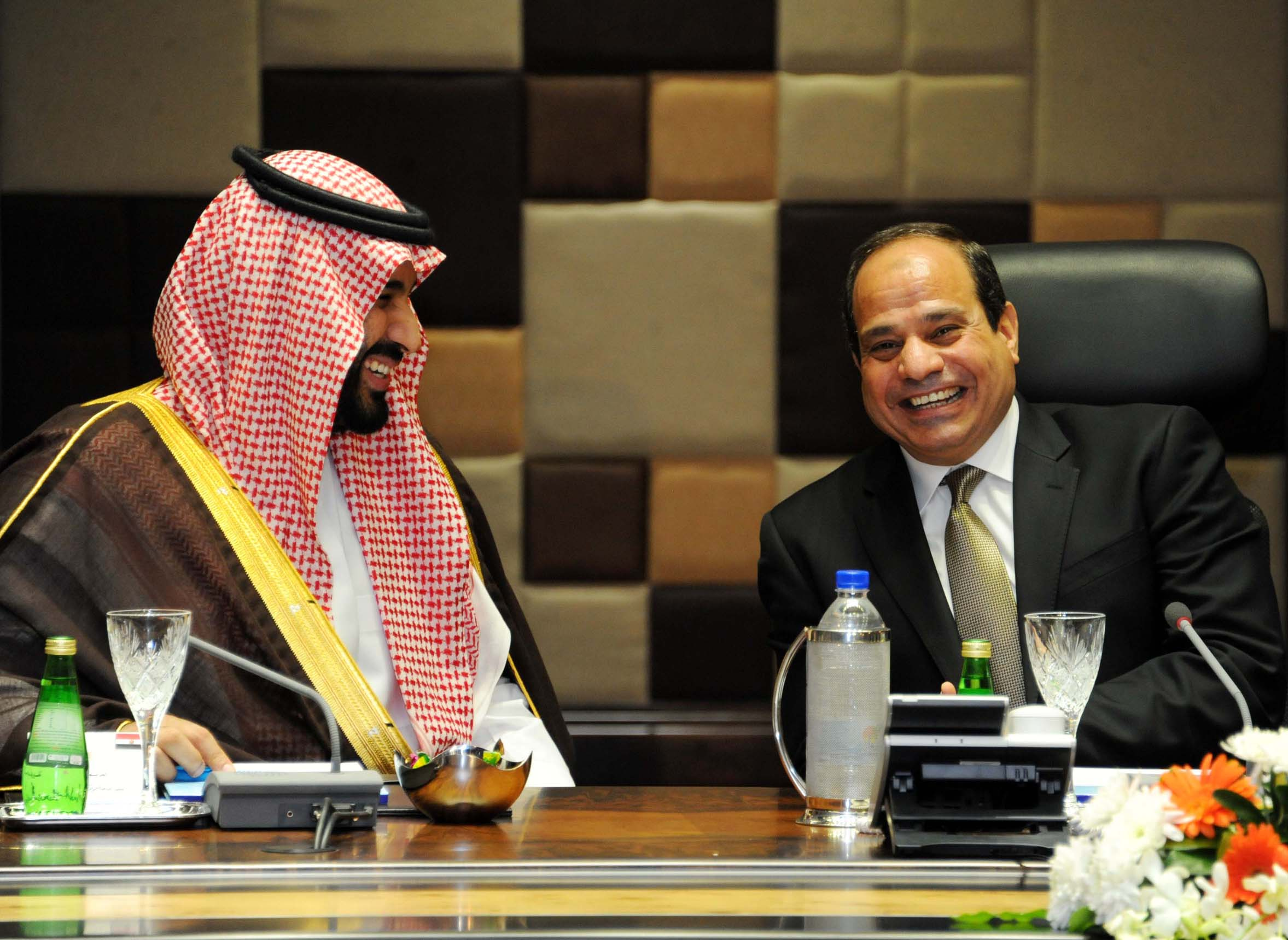 Egypt and Saudi Arabia discuss carrying out joint military manoeuvre - presidency