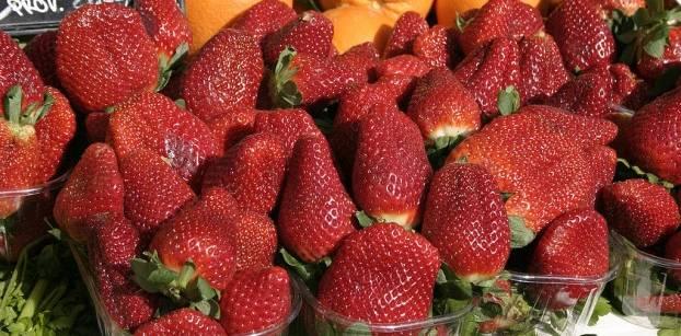 هل تسببت الفراولة المصرية في إصابات الكبد الوبائي بأمريكا؟