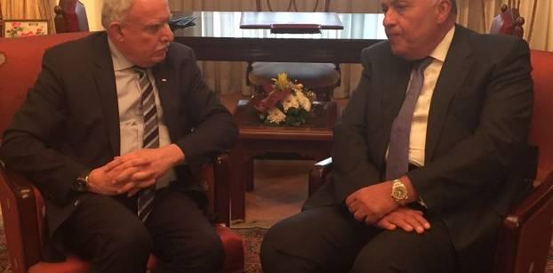 شكري: القضية الفلسطينية تحتل قمة أولويات السياسة الخارجية المصرية