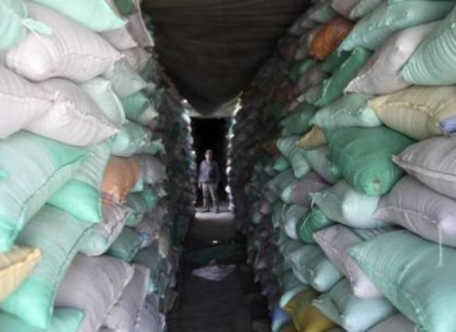 """وزير الزراعة: خبير من الأمم المتحدة لتحليل مخاطر فطر """"الأرجوت"""" في القمح"""