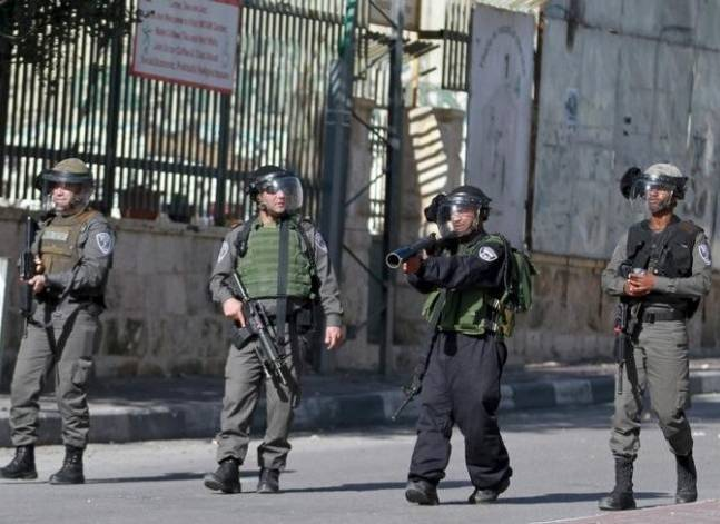 الخارجية: القضية الفلسطينية تحتاج لتحرك جاد