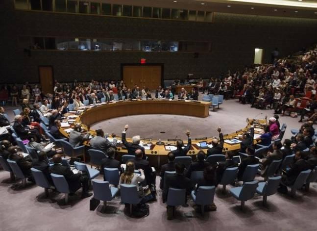 مصر تعرقل صدور بيان في مجلس الأمن الدولي يدين العنف في تركيا