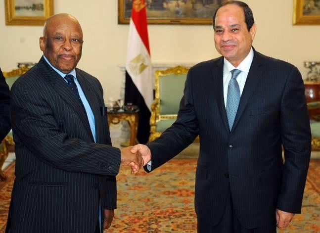 السيسي يبحث مع مسؤول أفريقي نشر قوة إقليمية في جنوب السودان