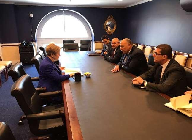 وزير الخارجية يطالب باستمرار الدعم الأمريكي لمصر