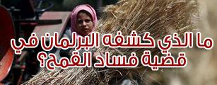 ما الذي كشفه البرلمان في قضية فساد القمح؟