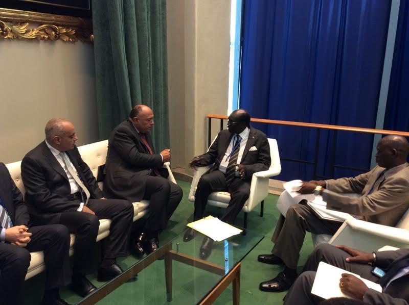 شكري: مصر تدعم اتفاق السلام في جنوب السودان