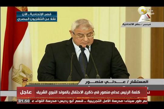 منصور: إقرار الدستور لم يكن غاية ولكن وسيلة لاتخاذ خطوات على الطريق الصحيح