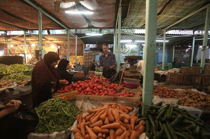 تصديري الحاصلات الزراعية: ندرس إمكانية سد فراغ المنتجات التركية في السوق الروسي